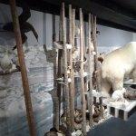 Photo of The Polar Bear Society