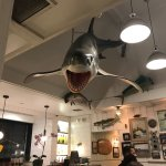 Photo of Bear Flag Fish Co-Newport Peninsula