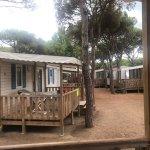Foto de Camping Bella Terra