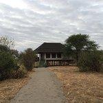 Tarangire River Camp Foto
