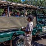 Lets Go on Safari