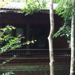 Wild Woods Spa and Resort