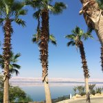 Photo de Jordan Valley Marriott Resort & Spa