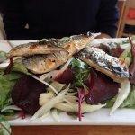 Grilled fillet of local mackerel
