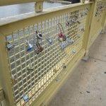 Locks left on the bridge