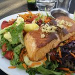 Salmon salad with fresh fruit and vegetables