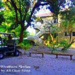 We can arrange for golf cart rentals at the front desk