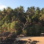 Narima Bungalow Resort Foto