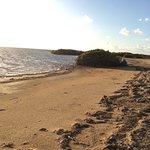 Photo of Seaspray Beach Holiday Park