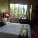 Billede af The Golden Frog Inn