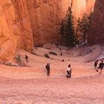 Navajo Loop looking down...