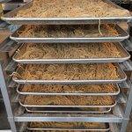 The racks of drying pasta