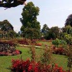 Photo of Parco della Villa Pallavicino