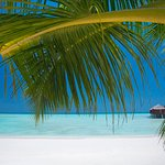 Photo of Anantara Dhigu Maldives Resort