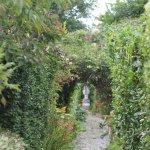 Entering the garden maze