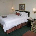 Photo of Hampton Inn Madison