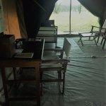 Φωτογραφία: Olakira Camp, Asilia Africa
