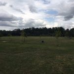 Erindale Park - open spaces for sports