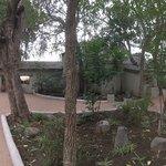 Notten's Bush Camp Foto