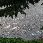 rushing Rogue River, view from River's Edge balcony