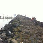 Jajaran batuan pantai