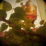 Lantern on the Terrace