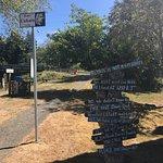Kurt Cobain Memorial Park Foto