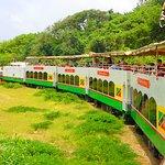 St Kitts Scenic Railway Train