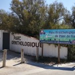 Photo of Camargue Nature Park