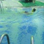 IMG_20151122_171240_large.jpg