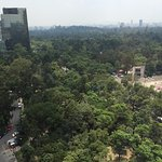 Chapultepec park from the room