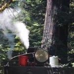 Photo de Roaring Camp & Big Trees Narrow-Gauge Railroad