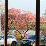 Photo of Howard Johnson Plaza Hotel Mayorazgo