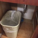 Trash can under the cabinet