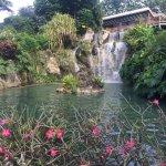 Photo of Jardin Botanique de Deshaies