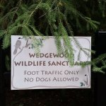 Photo of Wedgewood Wildlife Sanctuary