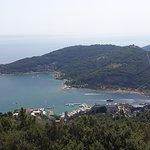 Photo of Isola Palmaria