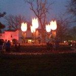 Gigantic tulip lights for festival