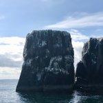 Impressive dolomite rocks of the Farne Islands