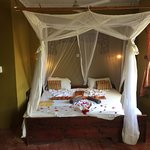 This is the honeymoon room, the staff does a great job of making it up with flower petals every
