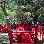 Photo of Aretusa park