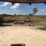 Somalisa Camp and Somalisa Acacia - African Bush Camps Photo