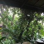 Eranda Herbal Spa Foto