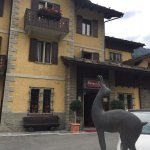 Foto de Hotel Dei Camosci