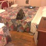 Foto de Hotel Ottaviani