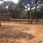 Foto de Parque Dalmau