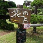 Photo of Nokonoshima Island