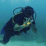 Photo de Bahia Divers