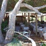 Foto de Invisa Hotel Club Cala Verde