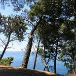 Photo of Montecasa Spa & Wellness